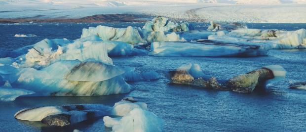 人人都说要拯救南极,但你们别光说不做啊!