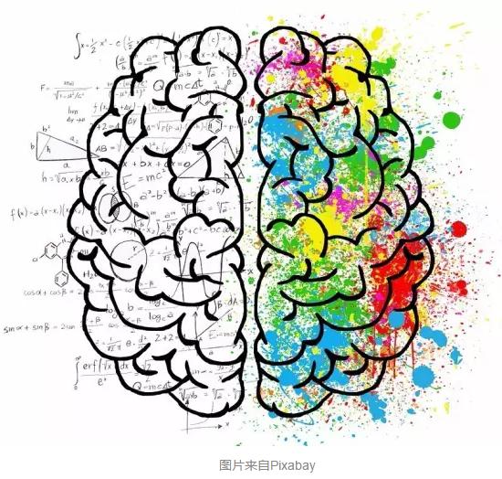 """我们大脑的""""缓存""""有多大?"""
