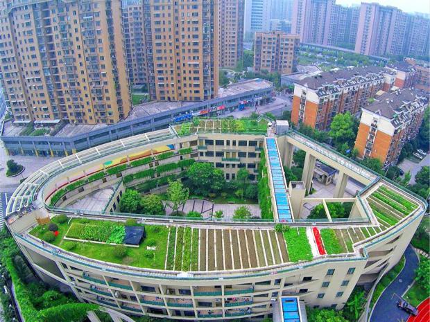 城市、企业和投资:中国气候领导力的新源泉