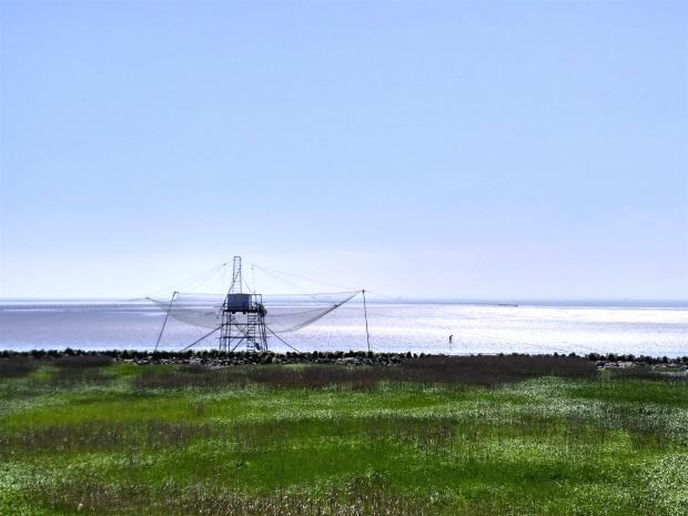 湿地保护新法能守住湿地红线吗?