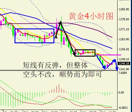 黄金短线有反弹但空头不改 原油多头寄希望明天EIA