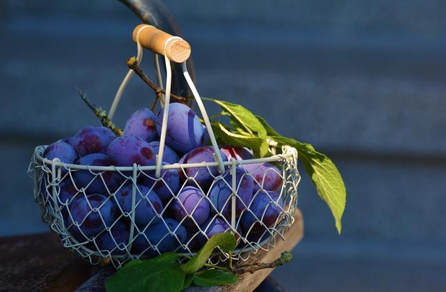 为什么农村水果烂地里,城市水果却始终卖高价?