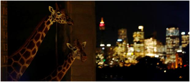 我们要像动物专家设计动物园一样设计城市