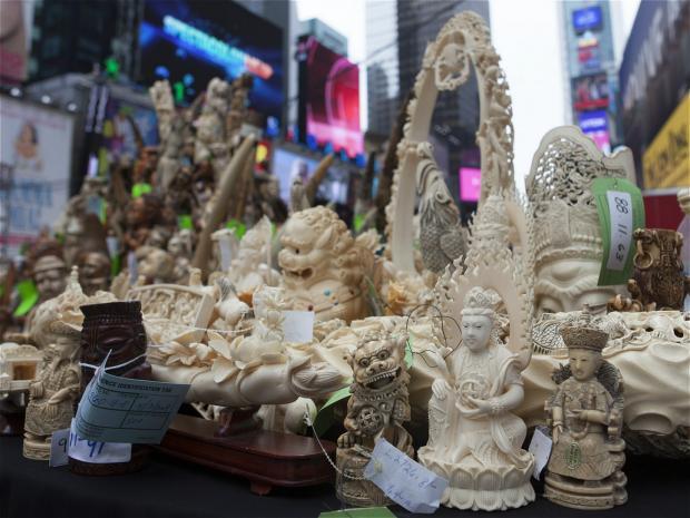 中国禁售令造成亚洲市场象牙价格暴跌