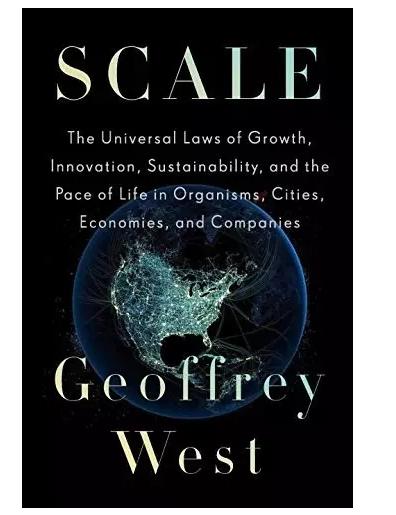 """Scale""读书笔记 | 天下之大作于细"
