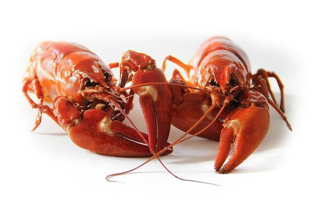 小龙虾怎么让你上瘾,并成功赚走你的钱的?