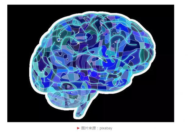 我们离人造大脑还有多远?