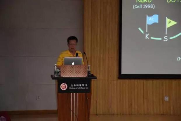 哈佛大学教授张毅在北大报告的学术笔记