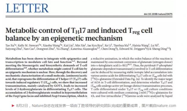 丁胜等人在Nature发文,揭示T细胞类型转化的代谢机制