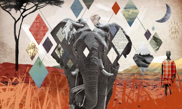 大象2.0:留住珍贵的象群集体记忆