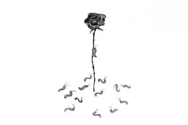 周保松:玫瑰的自主