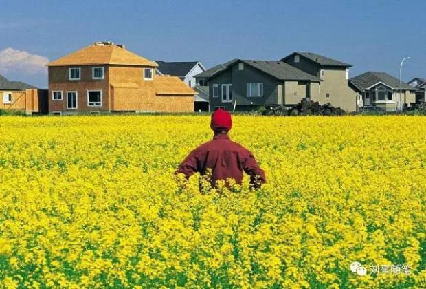 [原创]刘亭:高城市化率与经济发达当然有必然联系#新观察系列#