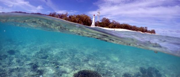 护肤品居然成了海洋杀手 大自然或可找到解决方案