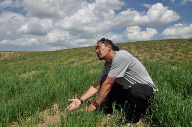 扎琼巴让:让牦牛成为治沙的一部分
