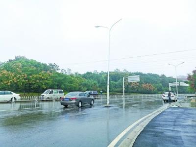 司机撞上路中央路灯法律分析