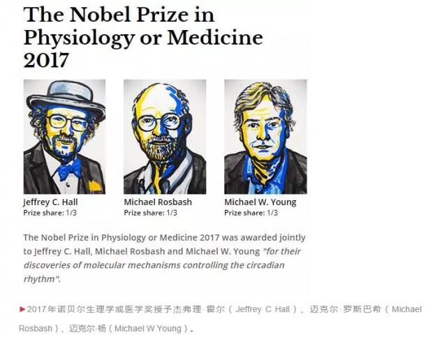 勇气和运气:生物钟的分子研究|饶毅深度解读2017年诺奖
