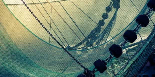 WTO渔业谈判计入倒计时