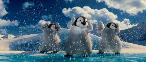 时寒冰:全球经济在雪地跳舞