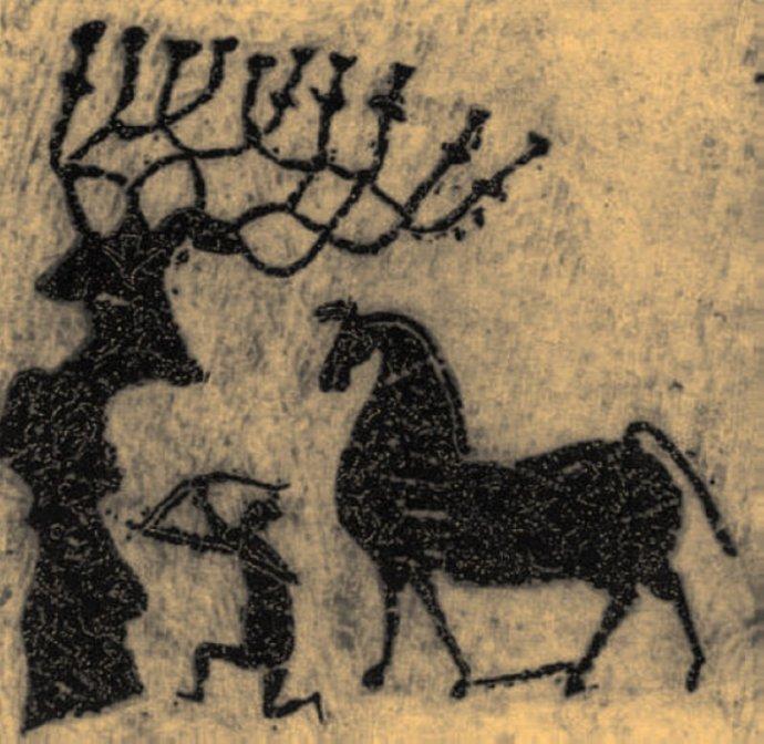 何处是全球生命树的起源?