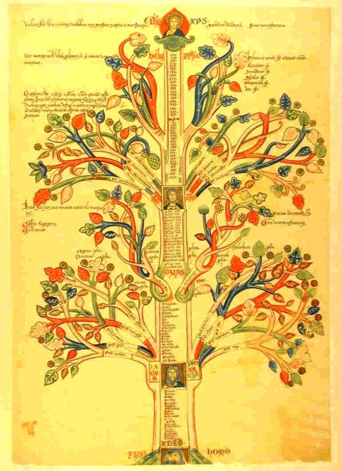 朱大可:何处是全球生命树的起源?