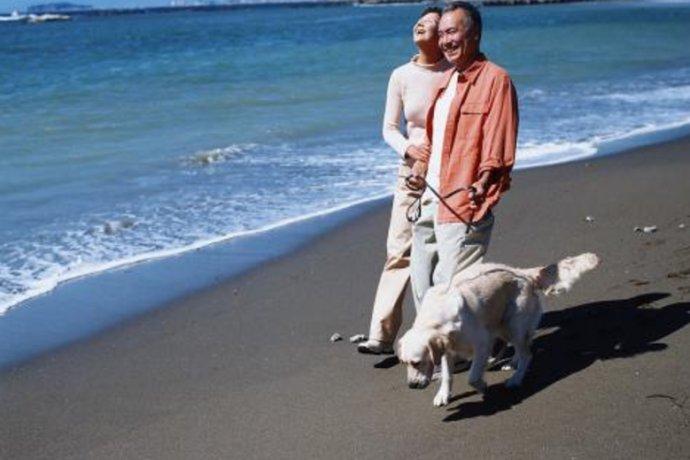 养狗可以增加你寿命,原来有这原因!