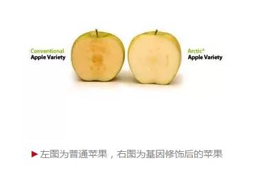 基因修饰的苹果来了,消费者会买单吗?