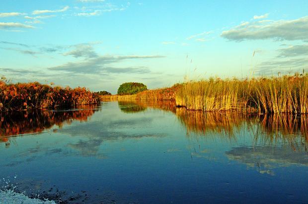 博茨瓦纳之旅:奥卡万戈三角洲