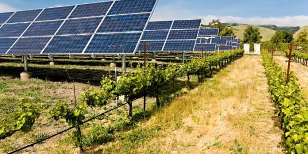 美国总统确认对太阳能产品和洗衣机征收高关税