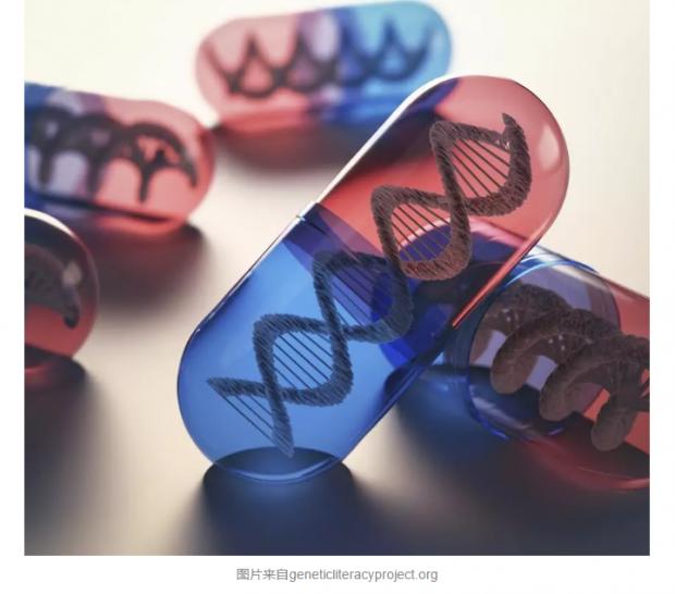 CRISPR的基因治疗:中国凭什么领先美国?