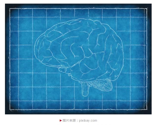 蒲慕明:中国脑计划与中国神经科学的未来