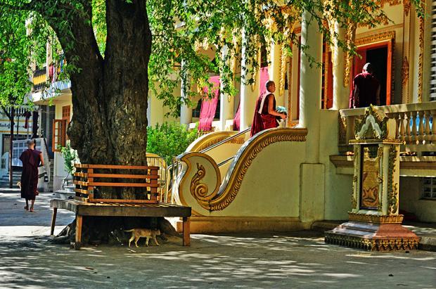 缅甸之旅:马哈刚大勇僧院