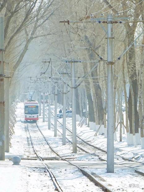 长春有条比日本还美的电车线,就像宫崎骏动画中开出来一样