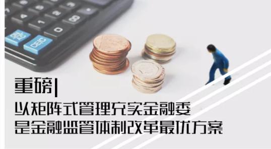 徐忠:以矩阵式管理充实金融委是金融监管体制改革最优方案