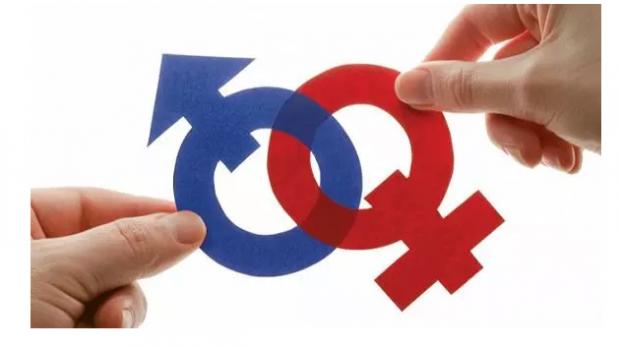 育儿与性别不平等:来自丹麦的证据
