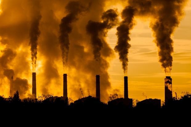 碳市场必须在稳定性和应变性之间取得平衡