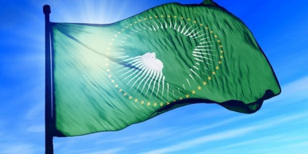 非洲领导人们启动非洲大陆自由贸易区