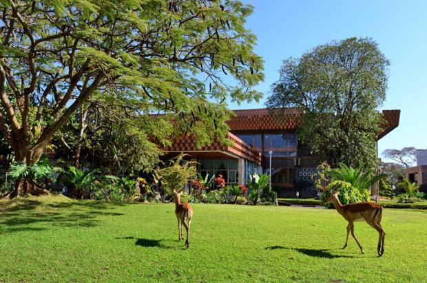 赞比亚之旅:卢萨卡的劲舞狂歌