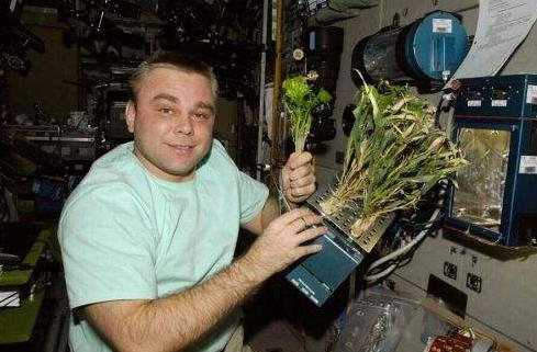 揭秘宇航员的秘密菜地,靠撒尿保存其活力!