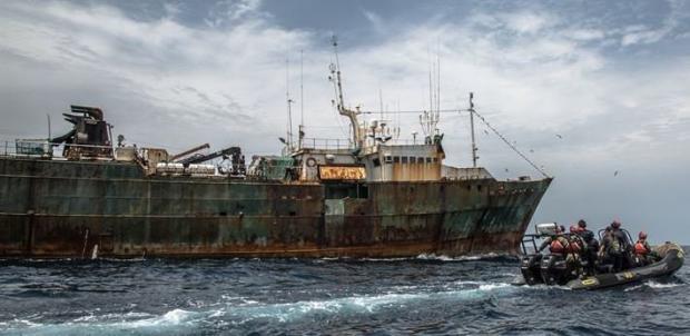 译文 | 悬挂骷髅旗的海岸警卫队逮捕犬牙鱼偷猎船
