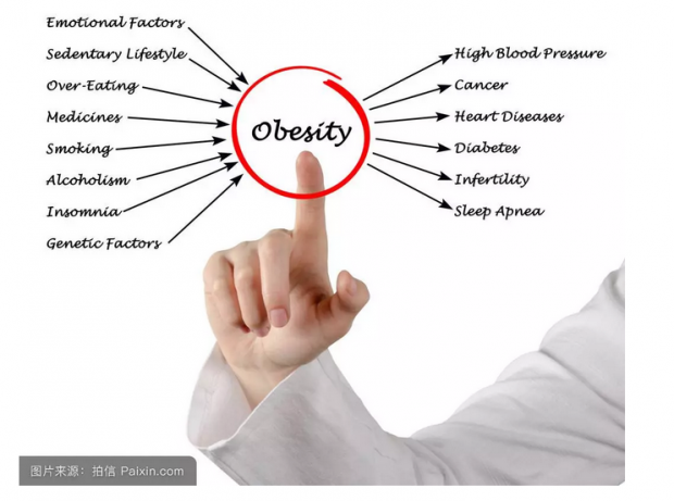 吸烟与肥胖的博弈——来自随机试验的证据