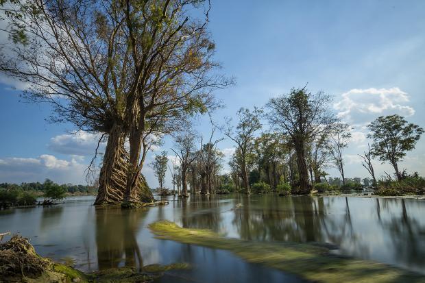 湄委会CEO:中国的参与对湄公河下游环境至关重要