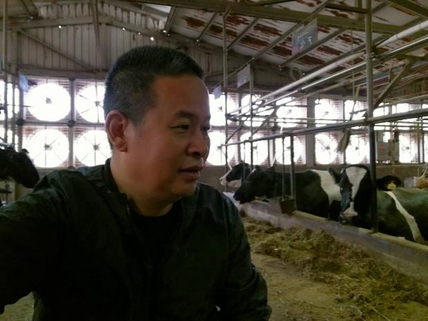 上海滩最后的奶牛大王