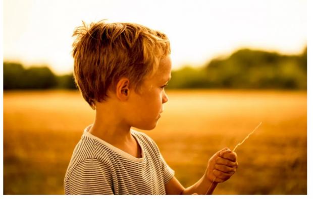 读者来信:离异父母如何处理子女关系