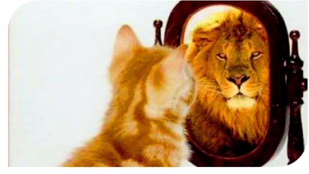 最高的境界是自我欺骗