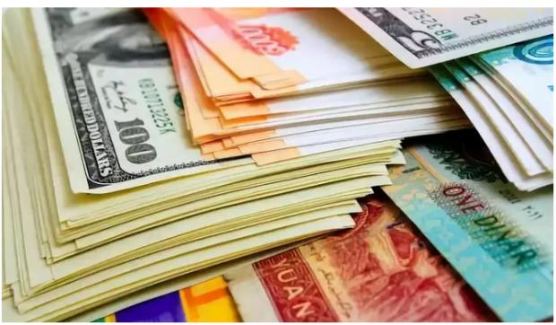 部分新兴市场国家货币贬值的基本面探源