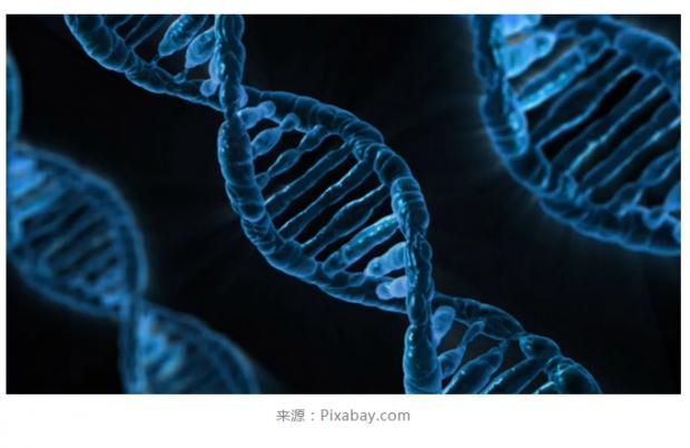 CRISPR/Cas9存在致癌风险?放心,这还只是一个猜想