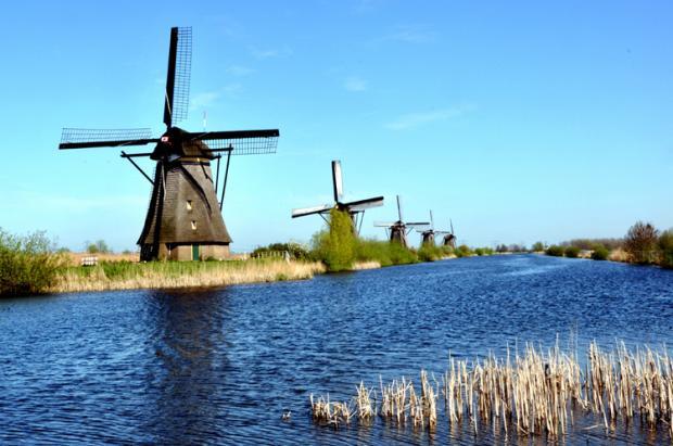 荷兰之旅:风车与郁金香
