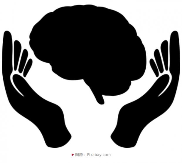 脑图谱,苏州造