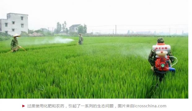 """中国耕地要减""""肥"""",扩大农业经营规模""""疗效""""显著"""