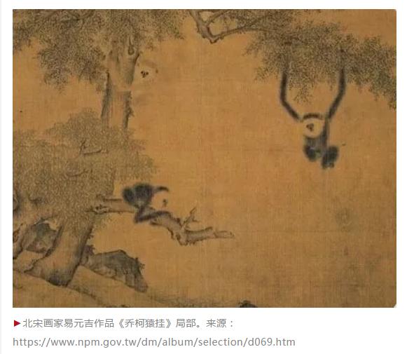 """在秦始皇奶奶的墓中,科学家发现""""君子帝国长臂猿"""""""